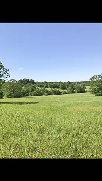 0 Cheatham Springs Rd, Eagleville, TN 37060 (MLS #1892653) :: EXIT Realty Bob Lamb & Associates