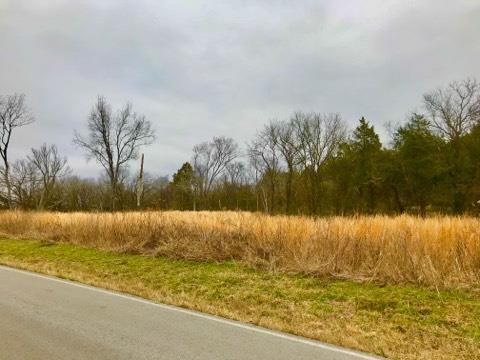 3 Parsons Road, Christiana, TN 37037 (MLS #1901958) :: Maples Realty and Auction Co.