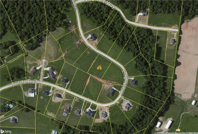 2155 Trieste Trl - Lot 36, Adams, TN 37010 (MLS #1904072) :: NashvilleOnTheMove | Benchmark Realty