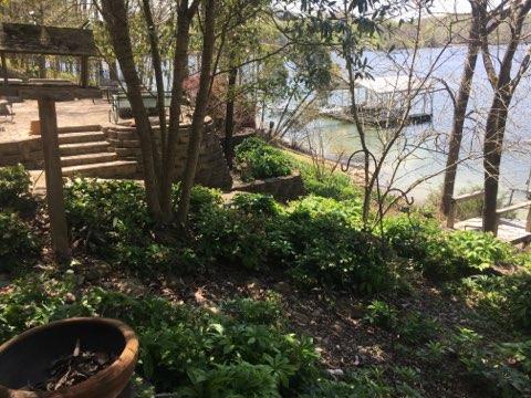 0 Barefield Court Lot 52, Lynchburg, TN 37352 (MLS #1920628) :: NashvilleOnTheMove | Benchmark Realty