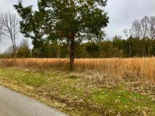 1 Parsons Road, Christiana, TN 37037 (MLS #1922736) :: EXIT Realty Bob Lamb & Associates
