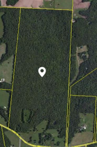 7345 Vandever Rd, Crossville, TN 38572 (MLS #1923306) :: John Jones Real Estate LLC