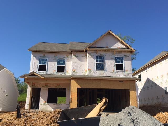 3007 Persimmon Street, Columbia, TN 38401 (MLS #1926795) :: Berkshire Hathaway HomeServices Woodmont Realty