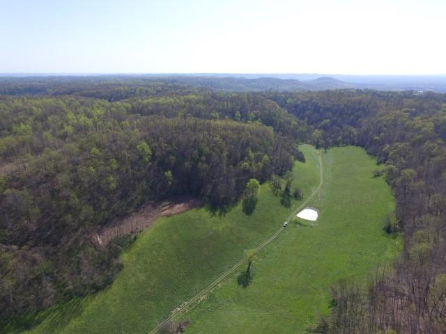 0 Burks Hollow Rd, Christiana, TN 37037 (MLS #1934549) :: REMAX Elite