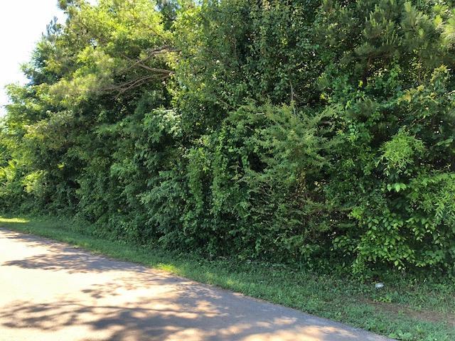 70 Pine Ave, Morrison, TN 37357 (MLS #1941910) :: Nashville On The Move
