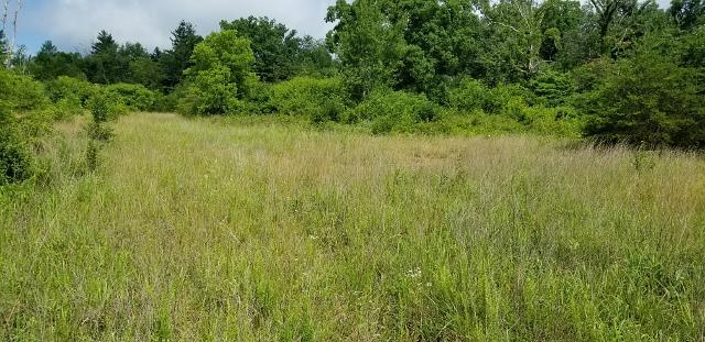 9 .70Ac Dunbar Rd, Crossville, TN 38572 (MLS #1946302) :: Ashley Claire Real Estate - Benchmark Realty