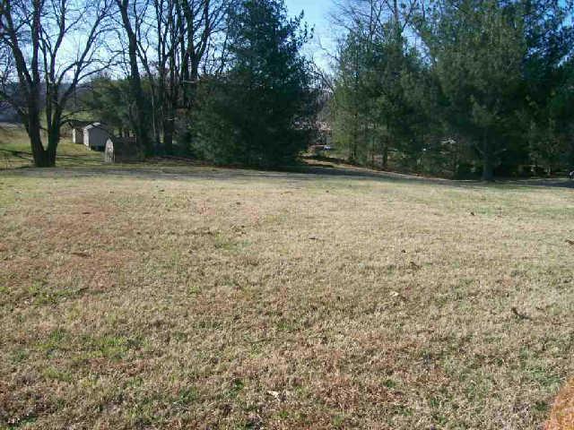 0 Travis Trl, McMinnville, TN 37110 (MLS #1947267) :: John Jones Real Estate LLC