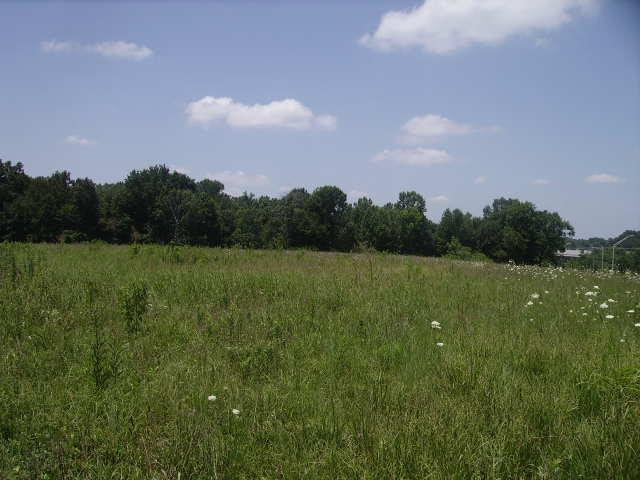 0 Highway 52 Bypass East, Lafayette, TN 37083 (MLS #1949613) :: HALO Realty