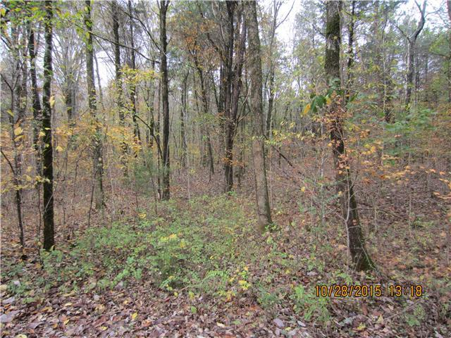 1668 Milltown Rd, Lewisburg, TN 37091 (MLS #1965688) :: The Milam Group at Fridrich & Clark Realty