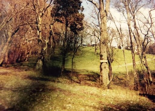 2382 Allisona Rd, Eagleville, TN 37060 (MLS #1966888) :: EXIT Realty Bob Lamb & Associates