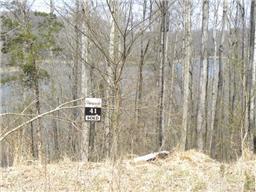 300 Dakota Ln, Smithville, TN 37166 (MLS #1971398) :: DeSelms Real Estate