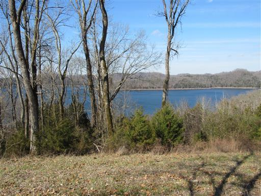 108 Wilson Cir, Smithville, TN 37166 (MLS #1972323) :: The Helton Real Estate Group