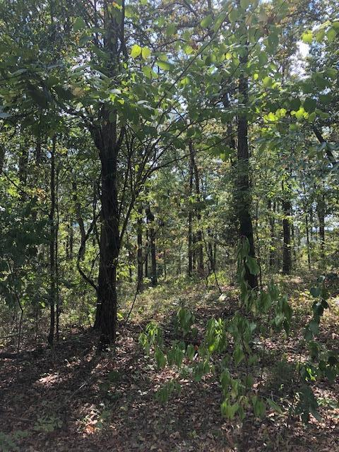 0 Purdy View Acres Dr, Bath Springs, TN 38311 (MLS #1974263) :: The Matt Ward Group