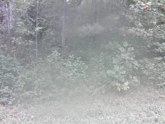 0 Carl Willis Rd, Flintville, TN 37335 (MLS #1975317) :: RE/MAX Homes And Estates
