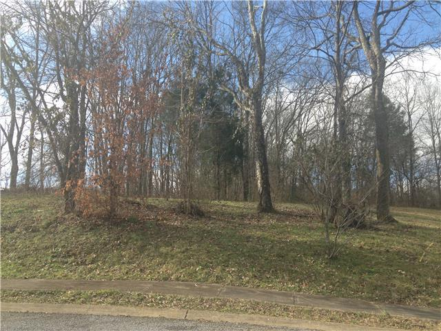 0 Township Ct, Hendersonville, TN 37075 (MLS #1980919) :: RE/MAX Homes And Estates