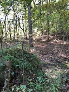 7147 Douglas Rd, Joelton, TN 37080 (MLS #1982231) :: Clarksville Real Estate Inc
