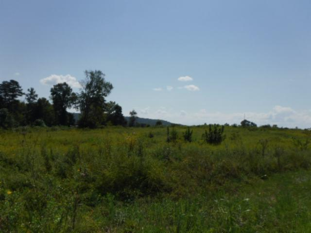 6 .21 Ac. Jared Rd, Sparta, TN 38583 (MLS #RTC1986548) :: REMAX Elite