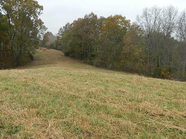 0 Ash Hill Rd, Spring Hill, TN 37174 (MLS #1989339) :: Nashville on the Move