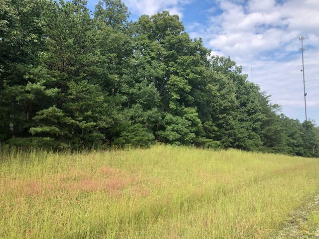 0 Hwy. 8, McMinnville, TN 37110 (MLS #1989657) :: John Jones Real Estate LLC