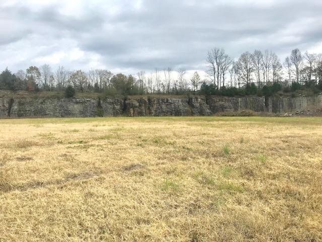 415 Gordonsville Highway, Gordonsville, TN 38563 (MLS #1990204) :: Fridrich & Clark Realty, LLC