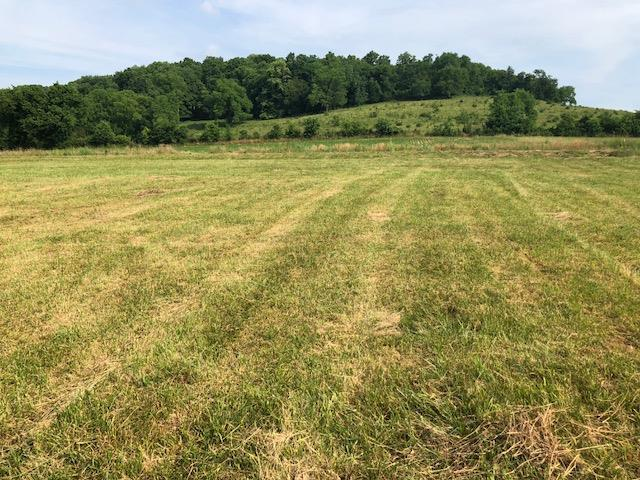 0 Highway 96, Auburntown, TN 37016 (MLS #1991587) :: Maples Realty and Auction Co.