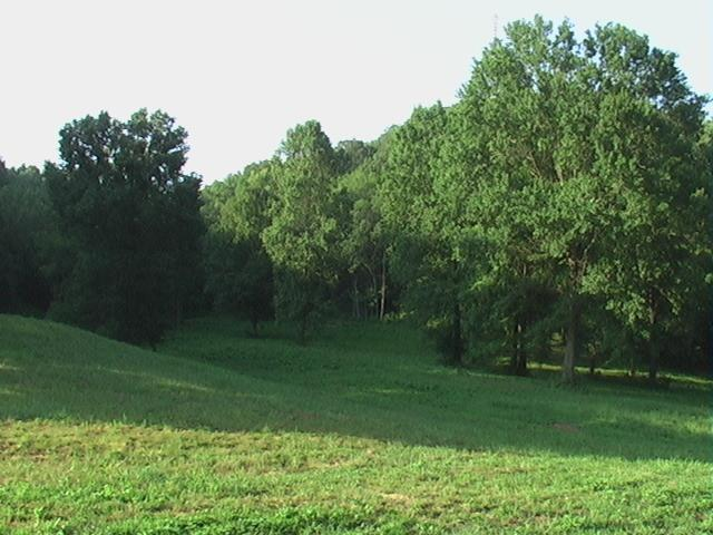 3833 Knight Drive, Whites Creek, TN 37189 (MLS #1993963) :: Christian Black Team
