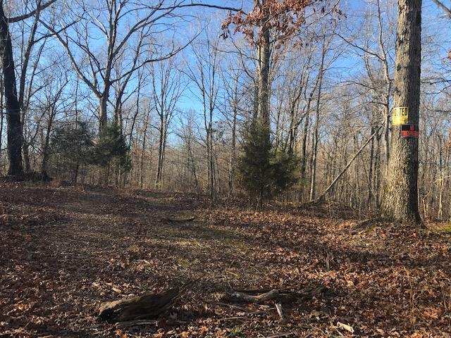 0 Stimson Rd, Dover, TN 37058 (MLS #2000765) :: Clarksville Real Estate Inc