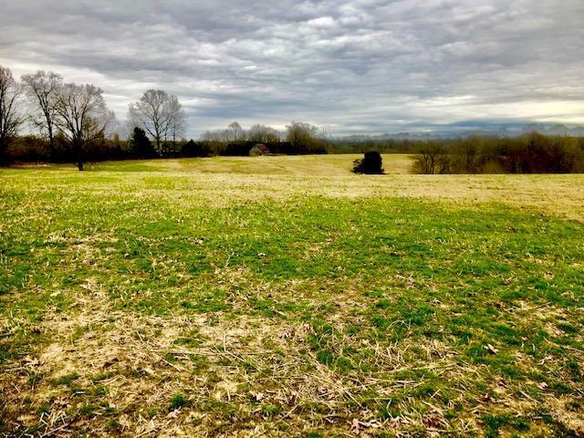 0 Hideaway Springs Ln, Tullahoma, TN 37388 (MLS #2002884) :: RE/MAX Homes And Estates