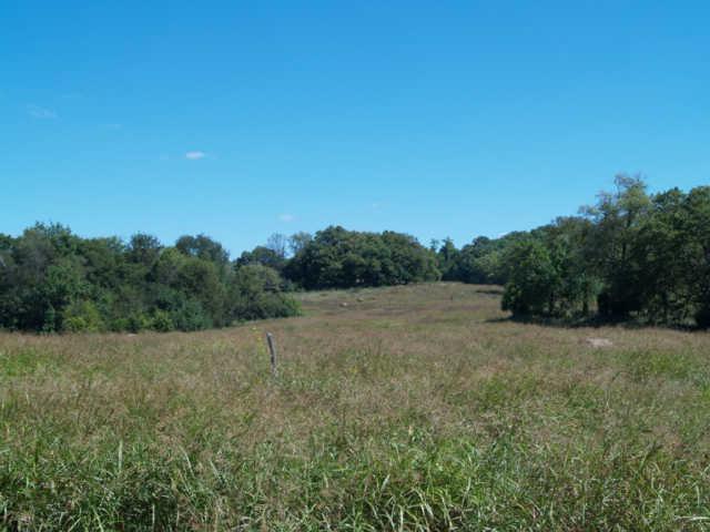 19 Old Tva Road, Columbia, TN 38401 (MLS #2003970) :: RE/MAX Homes And Estates