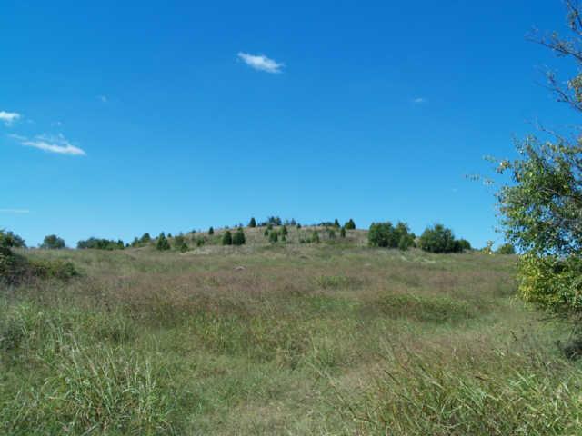 22 Santa Fe Pike, Columbia, TN 38401 (MLS #2004232) :: RE/MAX Homes And Estates
