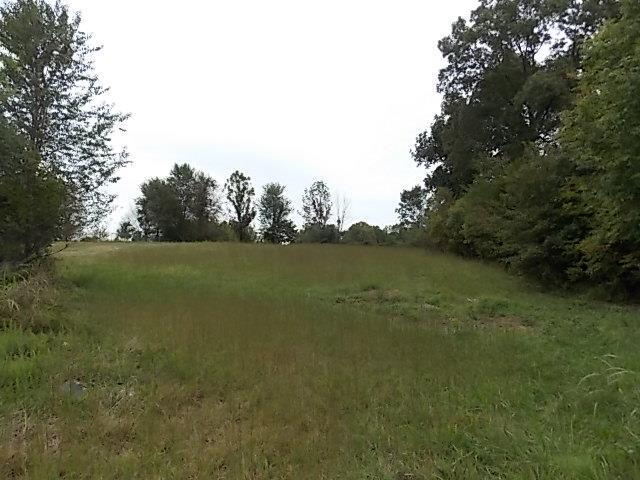 0 Hillside Dr- Lot #31, Dickson, TN 37055 (MLS #2005615) :: DeSelms Real Estate