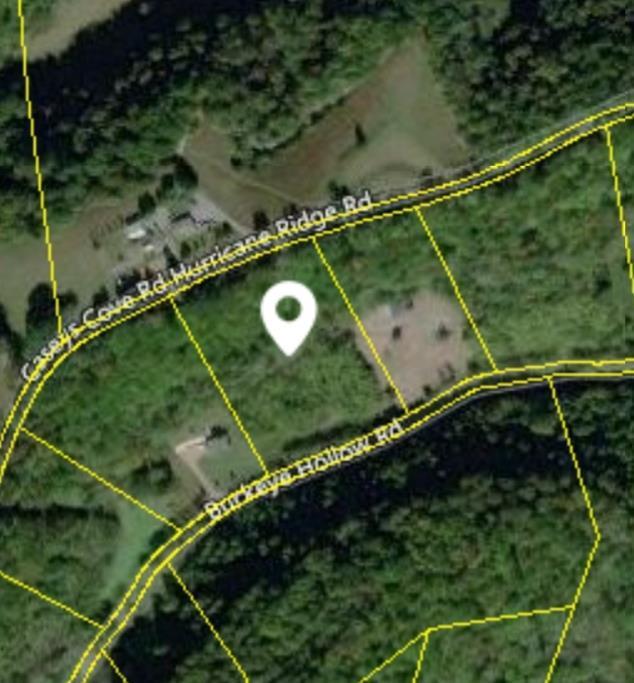 0 Buckeye Hollow Rd, Smithville, TN 37166 (MLS #RTC2006435) :: REMAX Elite