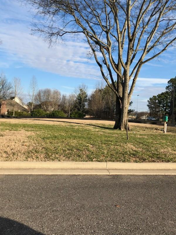 306 Carawood Ct - Lot 7, Franklin, TN 37064 (MLS #2008176) :: RE/MAX Homes And Estates