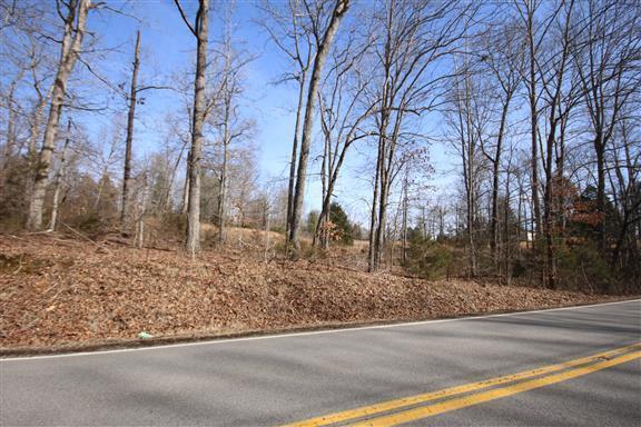 1663 Southside Rd, Southside, TN 37171 (MLS #2013929) :: FYKES Realty Group