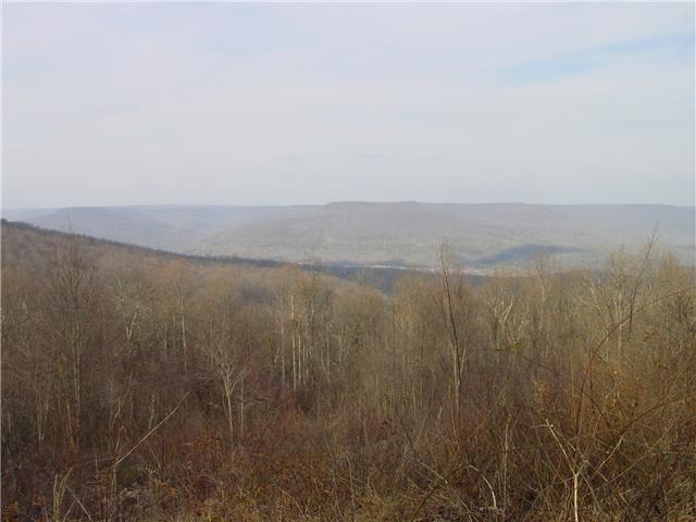 2 Jackson Point Road, Sewanee, TN 37375 (MLS #2014037) :: RE/MAX Choice Properties