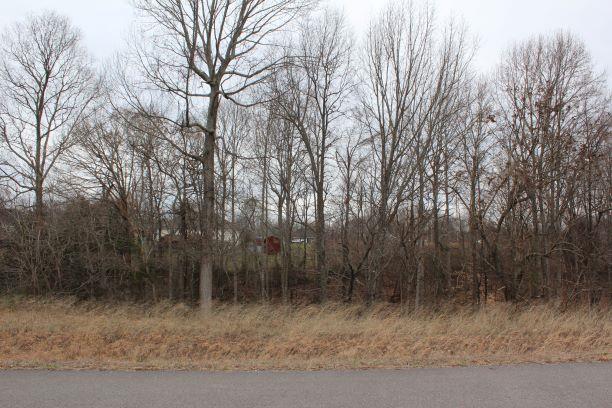 0 Brady Cole Ln, Lafayette, TN 37083 (MLS #2019150) :: The Helton Real Estate Group