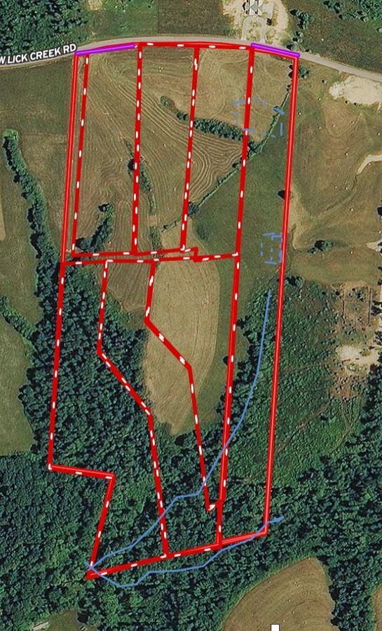 5 W Lick Creek, Primm Springs, TN 38476 (MLS #2023522) :: The Kelton Group
