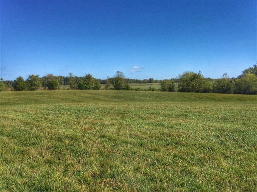 1960 Long Creek Rd (Tract 2), Dover, TN 37058 (MLS #2026884) :: RE/MAX Homes And Estates