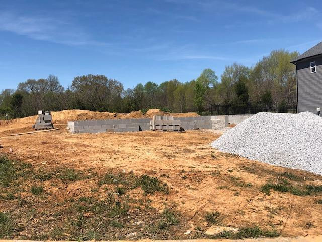 24 Bell Chase, Clarksville, TN 37040 (MLS #2028580) :: REMAX Elite
