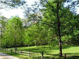 6 Ingman Farm Rd, Tracy City, TN 37387 (MLS #RTC2028886) :: Nashville on the Move