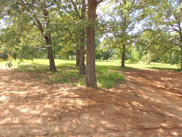1881 Red Fox Trl, Clarksville, TN 37042 (MLS #2030914) :: Christian Black Team
