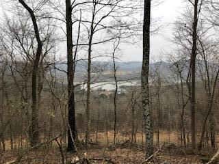 0 Fort Blount Ferry, Gainesboro, TN 38562 (MLS #2032517) :: FYKES Realty Group