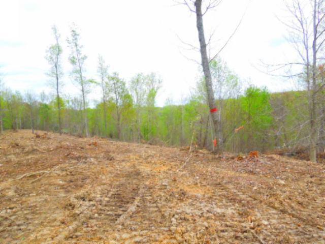 15 .86Ac Pleasant Cemetery Rd, Gainesboro, TN 38562 (MLS #2033230) :: CityLiving Group