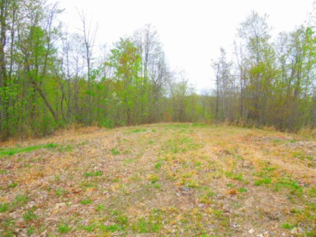 15 .63Ac Pleasant Cemetery Rd, Gainesboro, TN 38562 (MLS #2033258) :: CityLiving Group