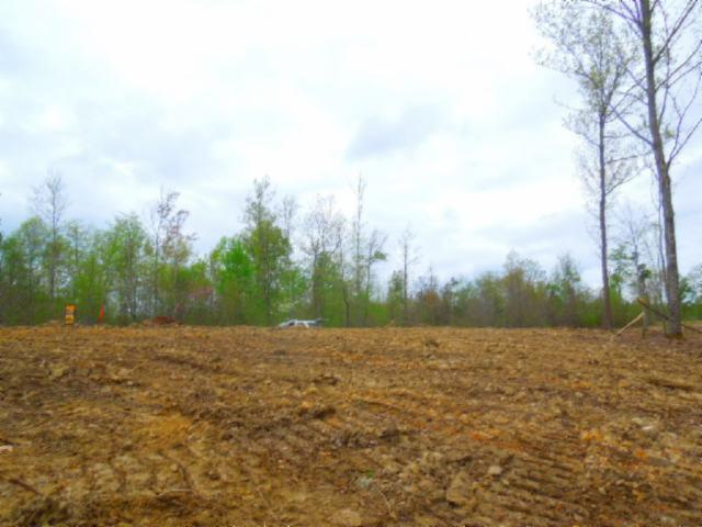 31 .49Ac Pleasant Cemetery Rd, Gainesboro, TN 38562 (MLS #2033264) :: CityLiving Group