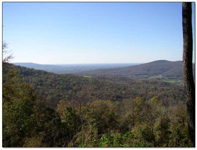 61 Long Mountain Trail, McMinnville, TN 37110 (MLS #RTC2037584) :: Nashville on the Move