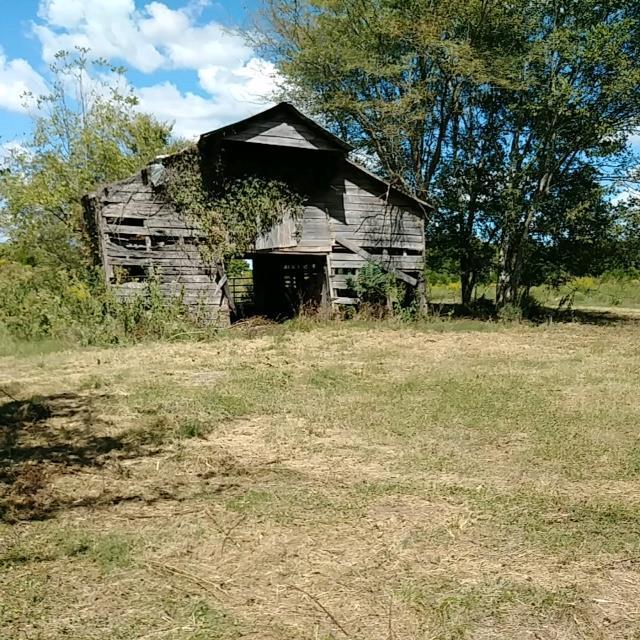 1788 Wade Brown Rd, Lewisburg, TN 37091 (MLS #2040554) :: REMAX Elite