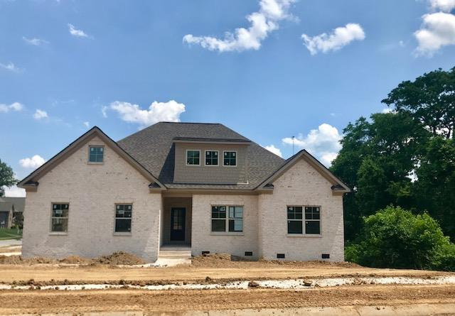 228 Hickory Point Dr (Lot 119), Lebanon, TN 37087 (MLS #2042602) :: Maples Realty and Auction Co.