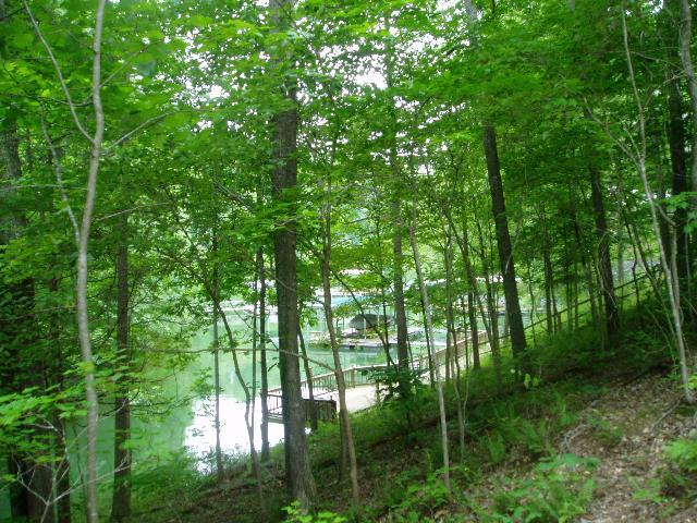 0 Leatherwood Dr Lot 9, Winchester, TN 37398 (MLS #RTC1413448) :: Nashville on the Move
