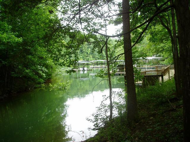 0 Whippoorwill Cove Lot 5, Winchester, TN 37398 (MLS #RTC1413466) :: The Milam Group at Fridrich & Clark Realty